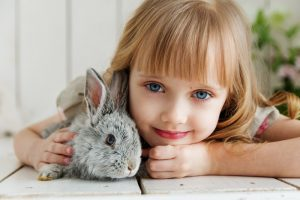 bunny-pet-bond-relationship